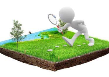 Садоводство и огородничество: в чем разница?!
